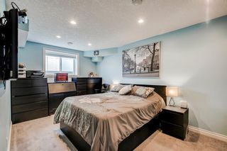 Photo 45: 234 Canoe Square SW: Airdrie Detached for sale : MLS®# A1043547