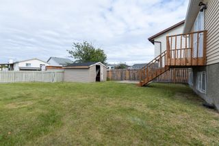 Photo 39: 23 Erin Meadows Court SE in Calgary: Erin Woods Detached for sale : MLS®# A1146245