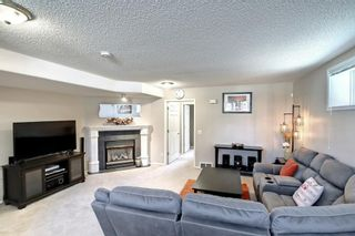 Photo 30: 67 Tarington Place NE in Calgary: Taradale Detached for sale : MLS®# A1146117