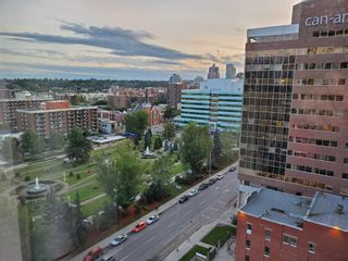 Photo 19: 1302 310 12 Avenue SW in Calgary: Beltline Apartment for sale : MLS®# A1092947