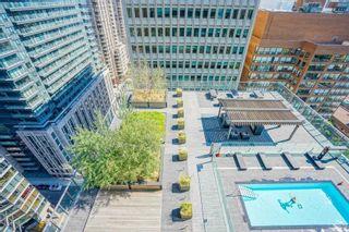 Photo 8: 207 57 St Joseph Street in Toronto: Bay Street Corridor Condo for lease (Toronto C01)  : MLS®# C4952636