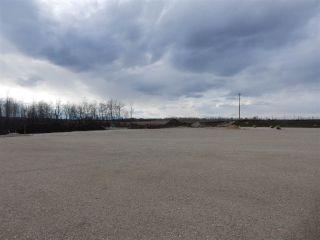 Photo 17: TWP ROAD 492 RANGE ROAD 234: Rural Leduc County Rural Land/Vacant Lot for sale : MLS®# E4263215