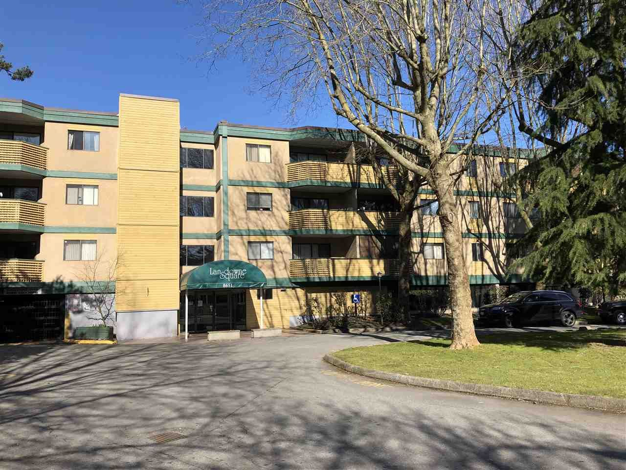 Main Photo: 203 8651 WESTMINSTER HIGHWAY in : Brighouse Condo for sale : MLS®# R2385686