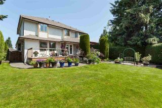 """Photo 37: 21630 45 Avenue in Langley: Murrayville House for sale in """"Murrayville"""" : MLS®# R2547090"""