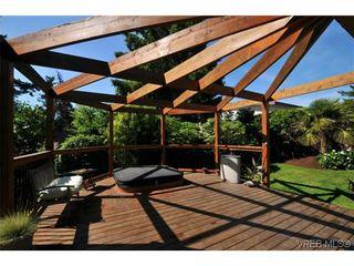 Photo 19: 1619 Barksdale Dr in VICTORIA: SE Lambrick Park House for sale (Saanich East)  : MLS®# 618275