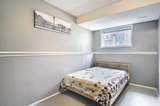 Photo 22: 332 Bridlewood Avenue SW in Calgary: Bridlewood Detached for sale : MLS®# A1135711