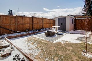 Photo 26: 19 Templemont Drive NE in Calgary: Temple Semi Detached for sale : MLS®# A1082358