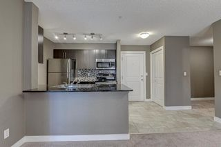 Photo 29: 2305 1317 27 Street SE in Calgary: Albert Park/Radisson Heights Apartment for sale : MLS®# A1060518