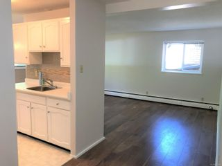 Photo 2: 3101 995 Bowen Rd in : Na Central Nanaimo Condo for sale (Nanaimo)  : MLS®# 854960