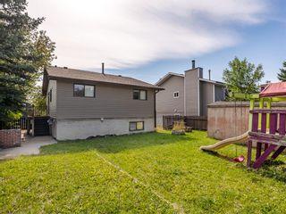 Photo 16: 40 Castlepark Road NE in Calgary: Castleridge Detached for sale : MLS®# A1146252