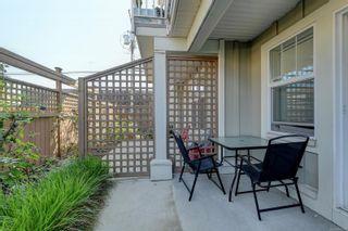 Photo 21: 13 3356 Whittier Ave in Saanich: SW Rudd Park Row/Townhouse for sale (Saanich West)  : MLS®# 861461