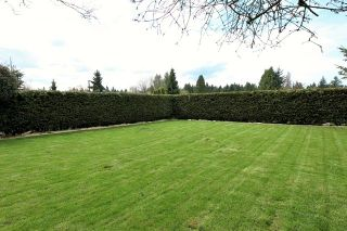 Photo 6: 357 W 24TH Street in North Vancouver: Central Lonsdale House for sale : MLS®# R2217336