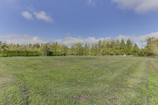"""Photo 5: 25965 24 Avenue in Langley: Otter District House for sale in """"Willpower Stables"""" : MLS®# R2503545"""