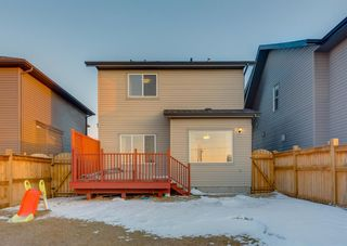 Photo 43: 150 AUTUMN Circle SE in Calgary: Auburn Bay Detached for sale : MLS®# A1089231