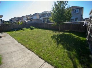 Photo 16: 7005 152st in Surrey: East Newton House for sale : MLS®# F1434273