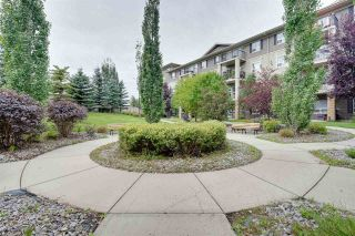 Photo 34: 216 1520 HAMMOND Gate in Edmonton: Zone 58 Condo for sale : MLS®# E4225767