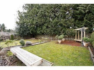 Photo 19: 14624 106TH AV in Surrey: Guildford House for sale (North Surrey)  : MLS®# F 1403182