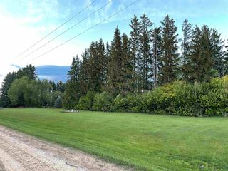 Photo 5: 60417 RGE RD 265: Rural Westlock County House for sale : MLS®# E4246856