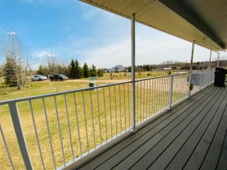 Photo 46: 18 243050 TWP RD 474: Rural Wetaskiwin County House for sale : MLS®# E4242590