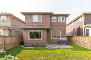 Photo 43: 75 Nolancliff Crescent NW in Calgary: Nolan Hill Detached for sale : MLS®# A1134231