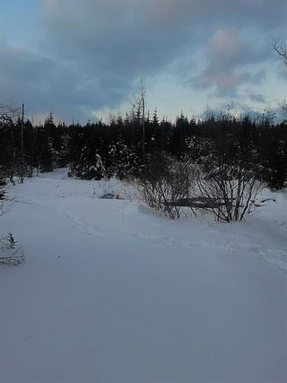 Photo 7: 0 Louisbourg Highway in Louisbourg: 207-C. B. County Vacant Land for sale (Cape Breton)  : MLS®# 202102405