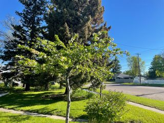Photo 21: 86 S 2 Street W: Magrath Detached for sale : MLS®# A1114923