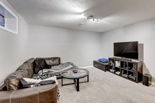 Photo 23: 539 Auburn Bay Heights SE in Calgary: Auburn Bay Detached for sale : MLS®# A1101404