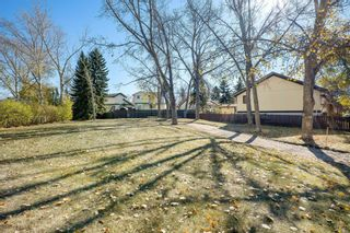 Photo 15: 816 Whitehill Way NE in Calgary: Whitehorn Detached for sale : MLS®# A1154099