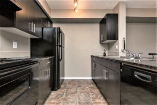 Photo 6: 217 18126 77 Street in Edmonton: Zone 28 Condo for sale : MLS®# E4241570