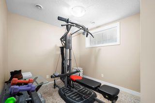 Photo 25: 145 Silverado Plains Close SW in Calgary: Silverado Detached for sale : MLS®# A1109232