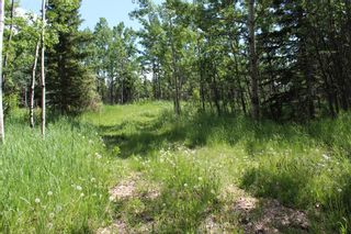 Photo 10: 25255 Bearspaw Place in Rural Rocky View County: Rural Rocky View MD Land for sale : MLS®# A1013795