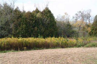 Photo 5: Lot 12 Con 11 in East Garafraxa: Rural East Garafraxa Property for sale : MLS®# X3956415