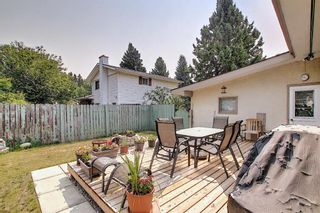 Photo 44: 924 CANNOCK Road SW in Calgary: Canyon Meadows Detached for sale : MLS®# A1135716