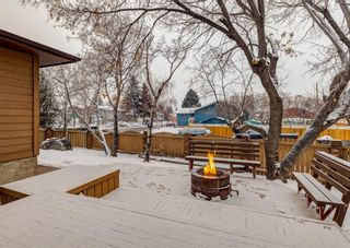 Photo 39: 124 QUEEN TAMARA Road SE in Calgary: Queensland Detached for sale : MLS®# A1086377