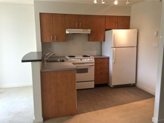 """Photo 12: 318 1295 RICHARDS Street in Vancouver: Yaletown Condo for sale in """"The Oscar"""" (Vancouver West)  : MLS®# R2528753"""