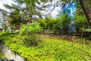 Photo 13: 425 Sparton Rd in VICTORIA: SW Prospect Lake House for sale (Saanich West)  : MLS®# 839475