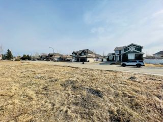 Photo 7: 738 52304 RGE RD 233: Rural Strathcona County Rural Land/Vacant Lot for sale : MLS®# E4236967