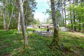 Photo 45: 7353 N Island Hwy in : CV Merville Black Creek House for sale (Comox Valley)  : MLS®# 875421