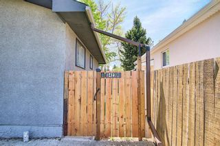 Photo 27: 3423 30A Avenue SE in Calgary: Dover Detached for sale : MLS®# A1114243