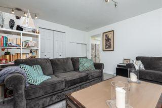 Photo 33: 6052 STANTON Drive in Edmonton: Zone 53 House for sale : MLS®# E4253474