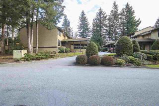 "Photo 1: 39 2998 MOUAT Drive in Abbotsford: Abbotsford West Townhouse for sale in ""BROOKSIDE TERRACE"" : MLS®# R2152060"