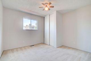 Photo 24: 4128 37 Street in Edmonton: Zone 29 House for sale : MLS®# E4253899