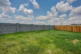Photo 35: 51 Skyview Springs Cove NE in Calgary: Skyview Ranch Detached for sale : MLS®# C4186074