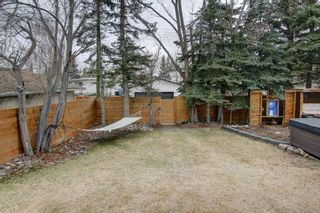 Photo 37: 6916 Silverview Road NW in Calgary: Silver Springs Detached for sale : MLS®# A1099138
