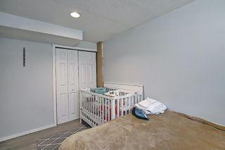Photo 29: 455 Falconridge Crescent NE in Calgary: Falconridge Detached for sale : MLS®# A1103477