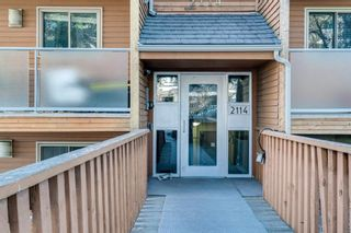 Photo 28: 403 2114 17 Street SW in Calgary: Bankview Apartment for sale : MLS®# A1080981