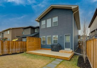 Photo 27: 47 EVANSPARK Road NW in Calgary: Evanston Detached for sale : MLS®# A1100764