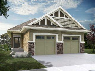 Photo 1: 447 EDGEMONT Road in Edmonton: Zone 57 House for sale : MLS®# E4230892