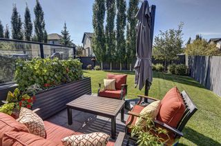 Photo 36: 17 Cranberry Lane SE in Calgary: Cranston Detached for sale : MLS®# A1142868
