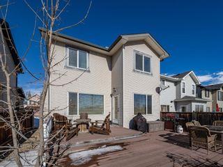 Photo 27: 154 New Brighton Circle SE in Calgary: New Brighton Detached for sale : MLS®# A1073444
